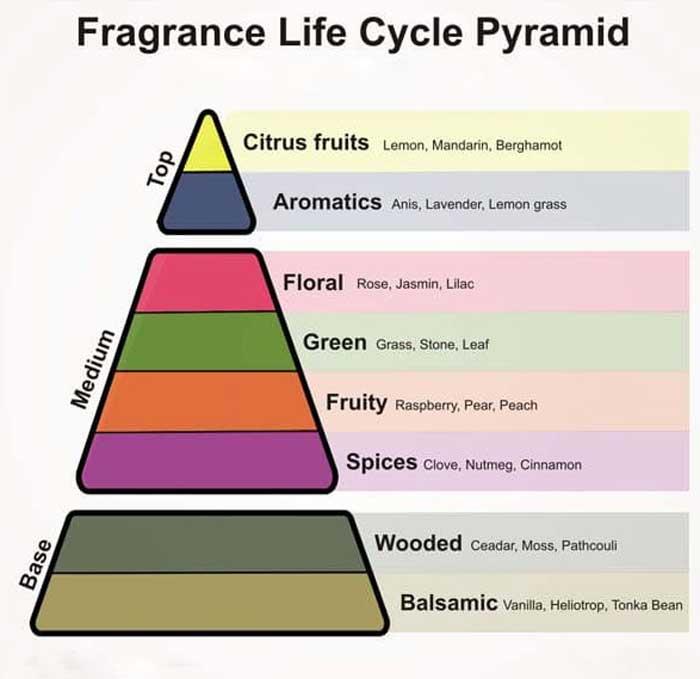 نحوه انتخاب عطر زنانه را بدانید